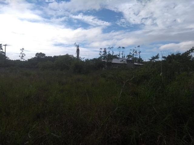 Terreno na Rodovia Ilhéus/Itabuna km 07 - Banco da Vitória - Foto 12