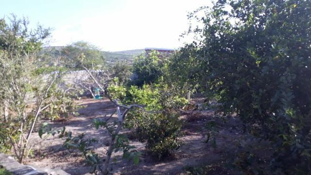Chácara com excelente localização em Gravatá (Cód.: 161h9) - Foto 14