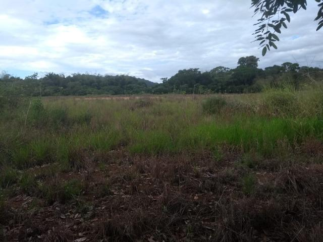 Terreno na Rodovia Ilhéus/Itabuna km 07 - Banco da Vitória - Foto 4