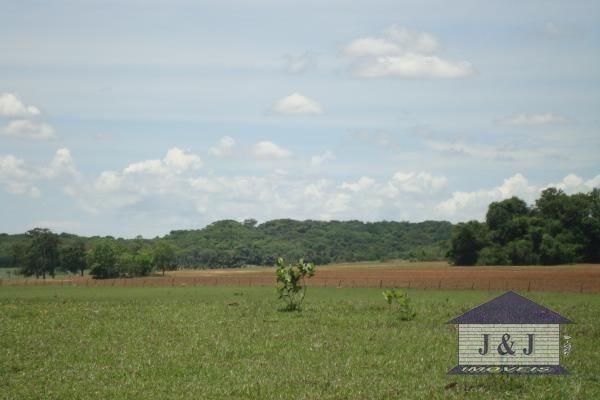 Fazenda município de Edealina - GO! Agende sua visita !!!! - Foto 5