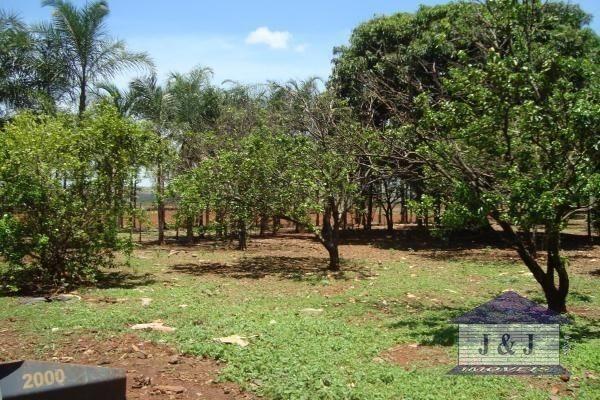 Fazenda município de Edealina - GO! Agende sua visita !!!! - Foto 13