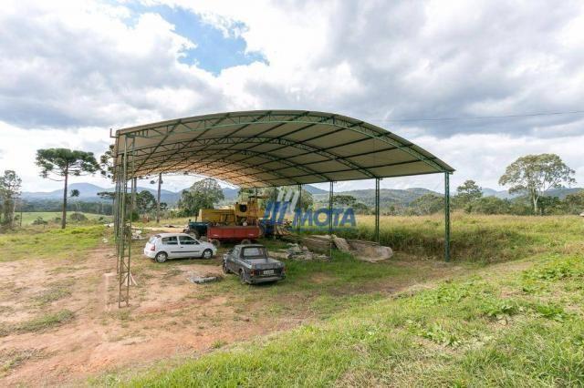 Fazenda rural à venda, roça nova, piraquara. - Foto 12