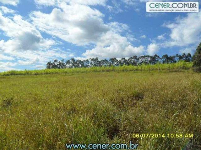 1560/Maravilhosa fazenda de 220 ha com linda sede - ac imóveis em BH - Foto 13