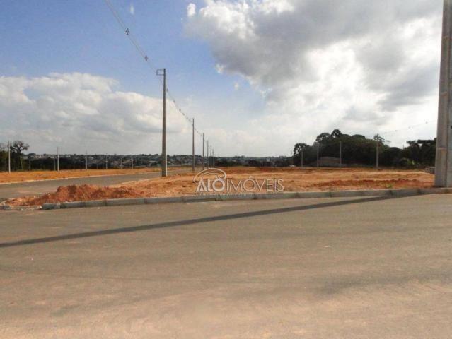 Terreno à venda, 144 m² por r$ 84.270,00 - eucaliptos - fazenda rio grande/pr - Foto 2