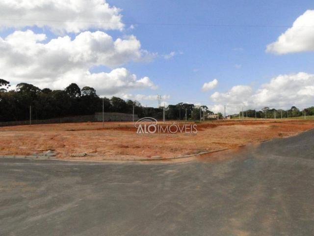 Terreno à venda, 144 m² por r$ 84.270,00 - eucaliptos - fazenda rio grande/pr - Foto 10