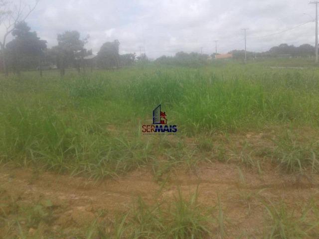 Terreno a venda no terceiro distrito da cidade de Ji-Paraná/RO - Foto 3