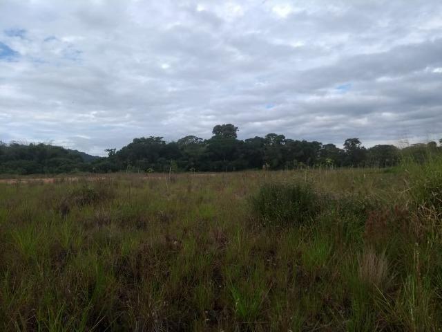 Terreno na Rodovia Ilhéus/Itabuna km 07 - Banco da Vitória - Foto 14