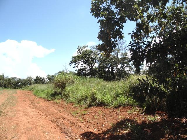 Terreno 02 Hectares Cond. Mansões Park Brasília - Área Rural Nova Betania Df - 135 - Foto 7