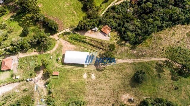 Fazenda rural à venda, roça nova, piraquara. - Foto 2