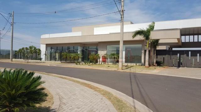 Terreno à venda em Alvorada, Aracatuba cod:V04361 - Foto 5