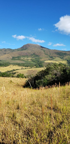 Terreno rural de 64 hectares no Sul de Minas Gerais, Baependi. (fazenda, sítio, terras) - Foto 4