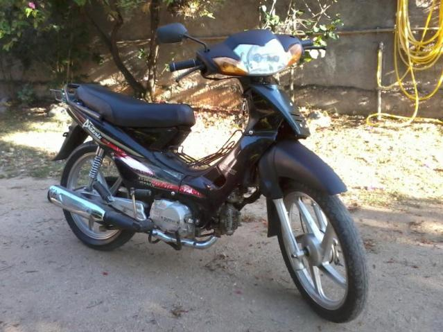 SCOOTERS SHINERAY PHOENIX 50CC XY 2011