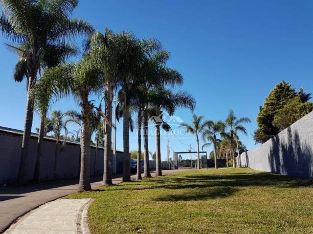 Terreno em condomínio fechado, 125m² exclusivos, área verde, a partir de r$105 mil reais - Foto 4
