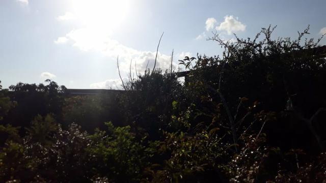 Chácara com excelente localização em Gravatá (Cód.: 161h9) - Foto 7
