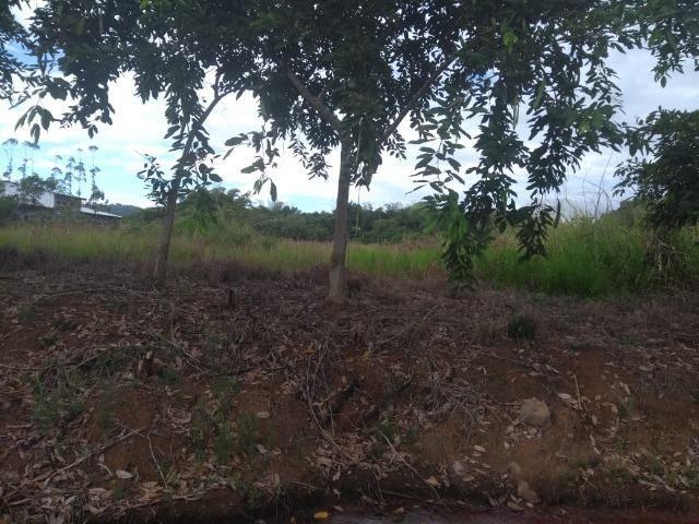 Terreno na Rodovia Ilhéus/Itabuna km 07 - Banco da Vitória - Foto 7
