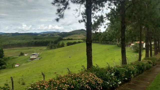 Fazenda de 280 alqueires no Sul de Minas Gerais - Foto 10