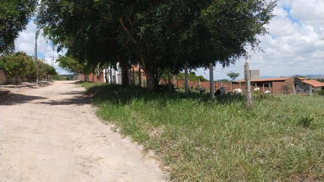 3 Lotes Estrada Velha de Chã Grande em Gravatá-PE - Foto 2