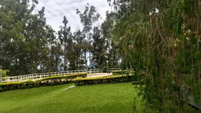 Fazenda de 280 alqueires no Sul de Minas Gerais - Foto 9