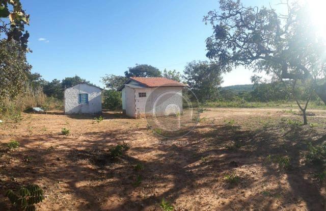 Chácara 7 hec na beira do asfalto estrada do manso à venda por r$ 120.000,00 - Foto 8