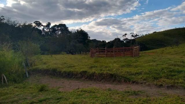 Oportunidade! terreno 60.000m2 a venda em pinhalzinho sp - Foto 12
