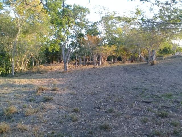 Lindíssima Fazendinha na região rural de Antonio Cardoso Bahia - Foto 13