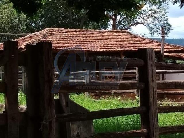 Fazenda/com um projeto que da valorização as terras - Foto 11