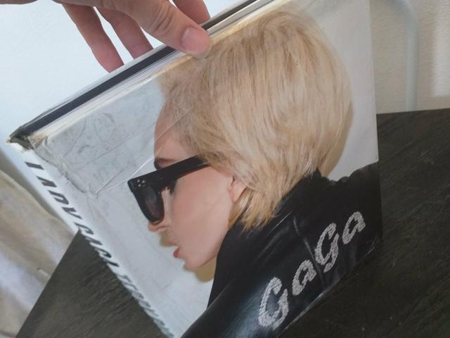 Livro LADY GAGA X TERRY RICHARDSON - Foto 6