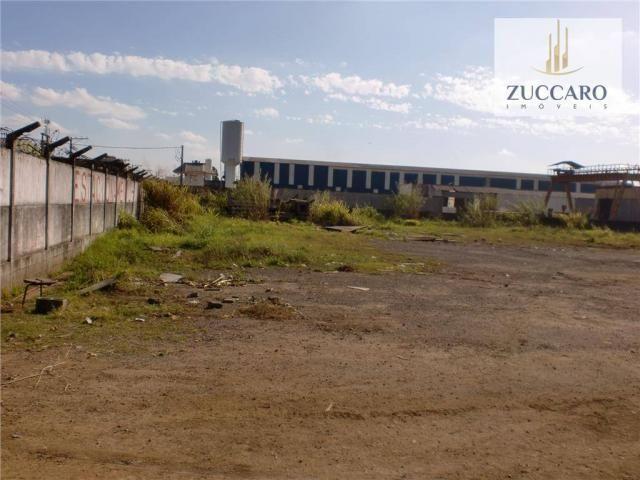 Terreno industrial para locação, vila nova bonsucesso, guarulhos - te0408. - Foto 5