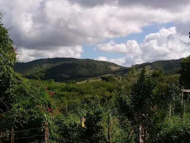 Fazenda Ipiaú vale do Gongoji de 1.150ha com estrutura e sede. Oportunidade - Foto 13