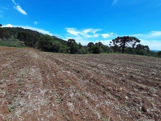 Terreno à venda em Urupema - Foto 9