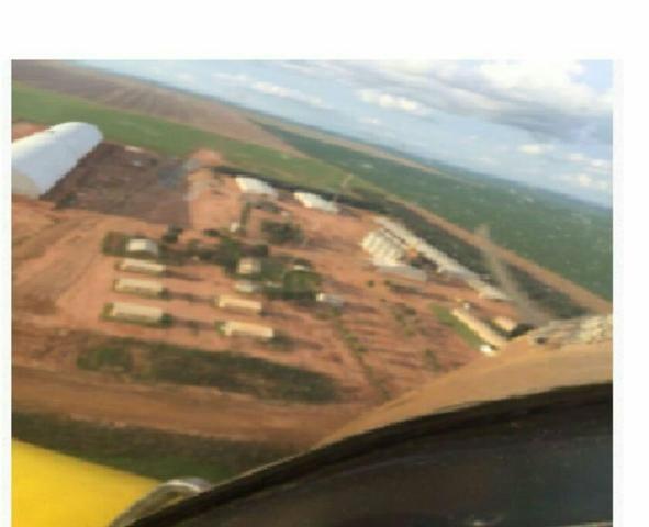 Fazenda de 57 mil hectares, soja, milho e algodao