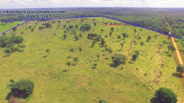 Fazenda 110 hectares nordeste mt nikolaiimoveis