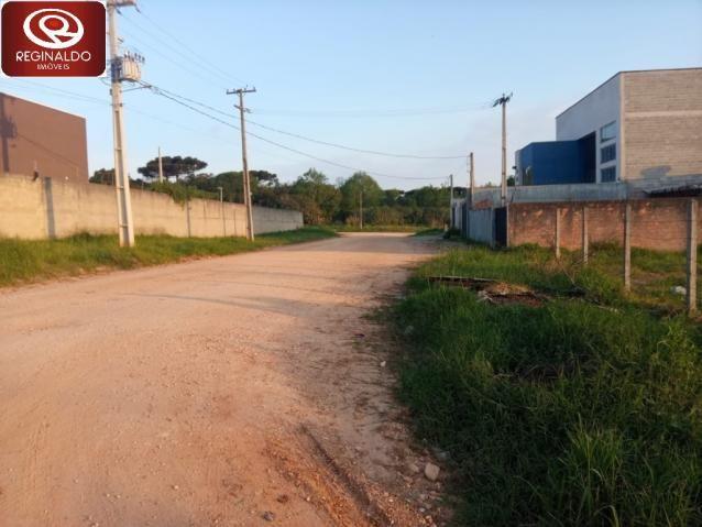 Terreno à venda em Centro industrial maua, Colombo cod:00062.004 - Foto 4