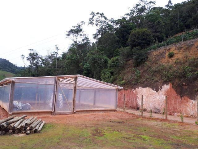 Fazenda com 15 Hectares (150 mil metros) em João Neiva - Foto 4