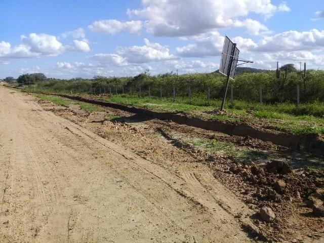 Excelente área de terra com 19.600 metros quadrados na BR 116 Norte - Foto 13