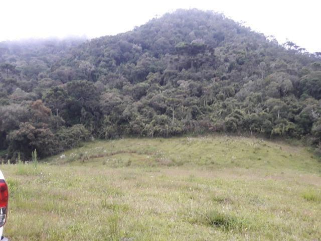 Sitio em Urubici/chácara rural em Urubici/área rural - Foto 6
