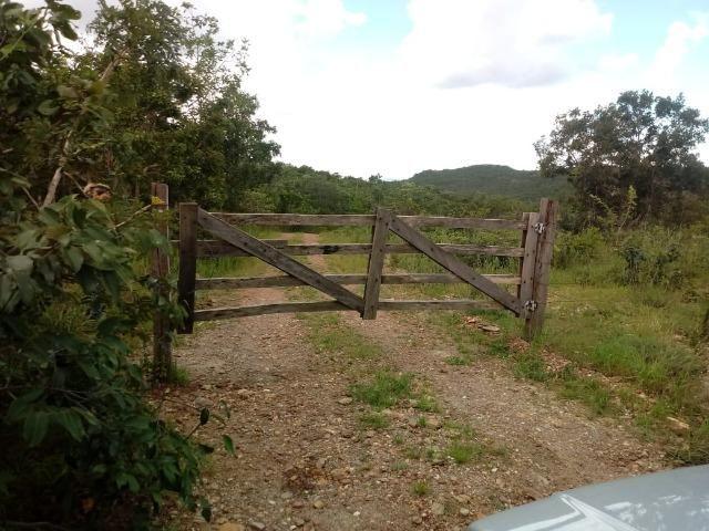 Fazenda 22 alqueires - Foto 14