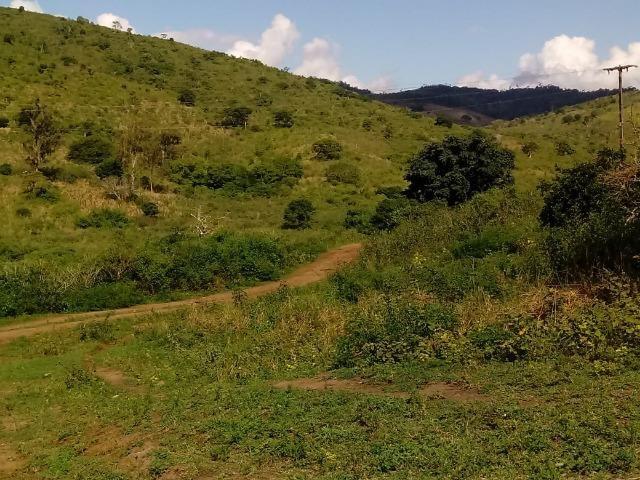 Fazenda Ipiaú vale do Gongoji de 1.150ha com estrutura e sede. Oportunidade - Foto 9