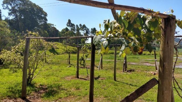 Sítio 4 Hectares - Casa de 3 Quartos - 5 Açudes - Galpão - São Sebastião - Treze de Maio - Foto 12