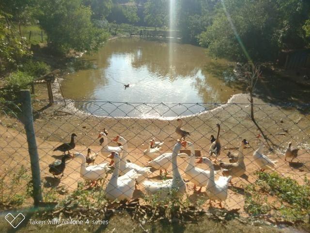 Terreno em condomínio fechado Vale luar - Foto 7