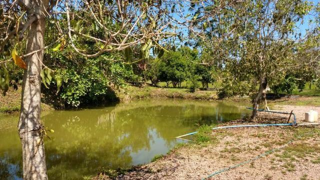 Sítio 4 Hectares - Casa de 3 Quartos - 5 Açudes - Galpão - São Sebastião - Treze de Maio - Foto 17