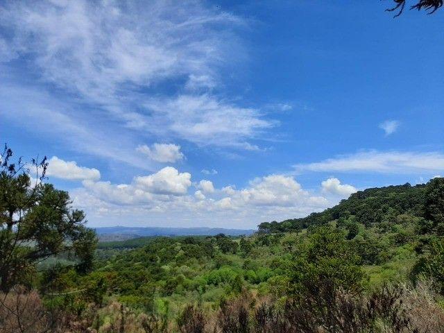Terreno à venda em Urupema - Foto 3