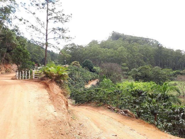 Fazenda com 15 Hectares (150 mil metros) em João Neiva - Foto 3