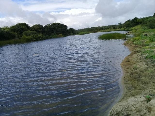 Excelente propriedade de 340 tarefas de terras margeando o rio Sacraiú - Foto 5