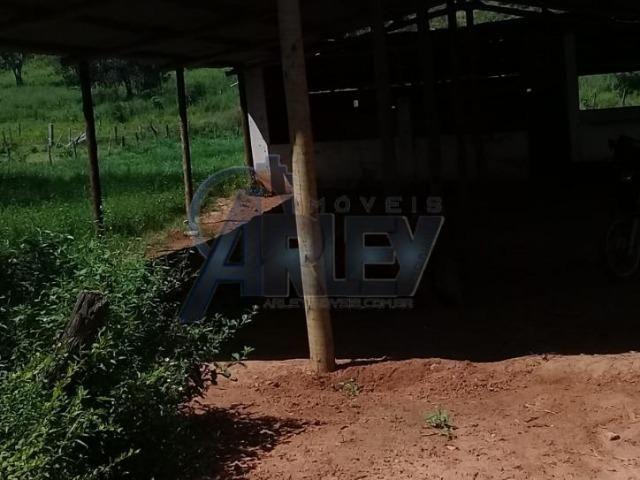 Fazenda/com um projeto que da valorização as terras - Foto 8