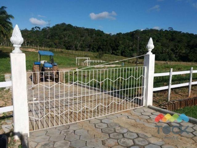 Sítio Fazenda a 30km de Salvador - Foto 14