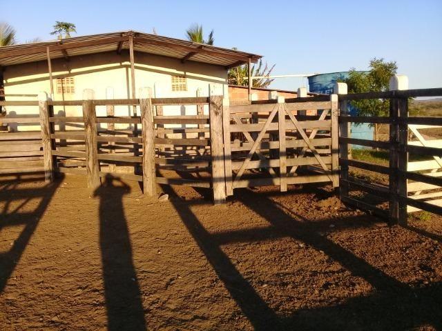 Lindíssima Fazendinha na região rural de Antonio Cardoso Bahia - Foto 12