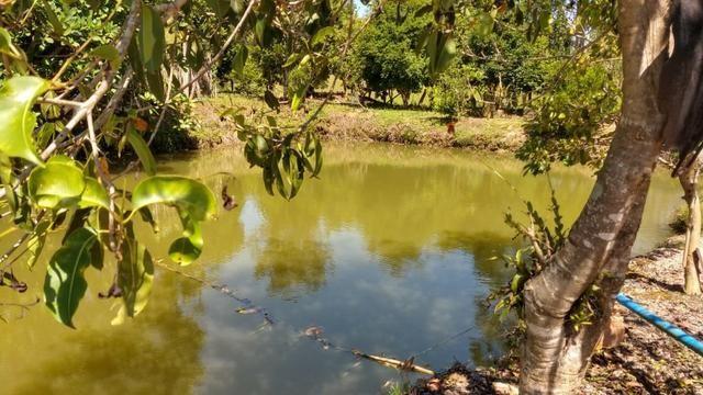 Sítio 4 Hectares - Casa de 3 Quartos - 5 Açudes - Galpão - São Sebastião - Treze de Maio - Foto 14