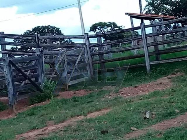 Fazenda/com um projeto que da valorização as terras - Foto 16