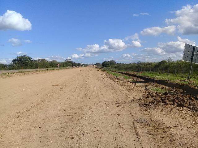 Excelente área de terra com 19.600 metros quadrados na BR 116 Norte - Foto 11